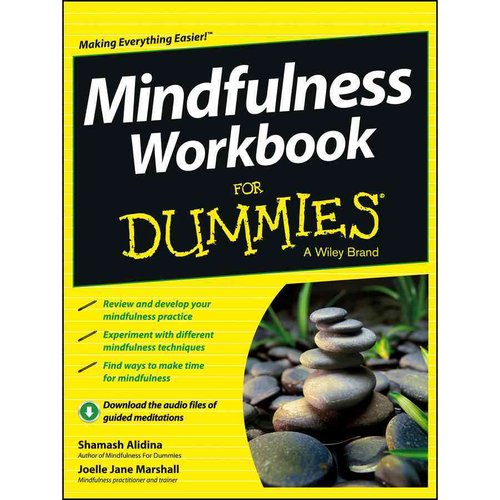 Mindfulness Workbook for Dummies Review