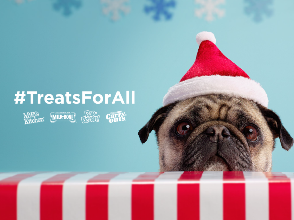 #Treatsforall Including pets in the holidays