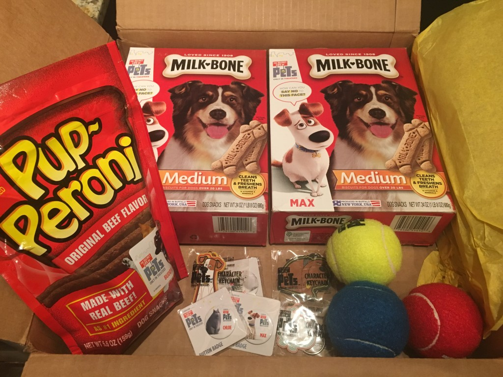 Secret Life of Pets Package