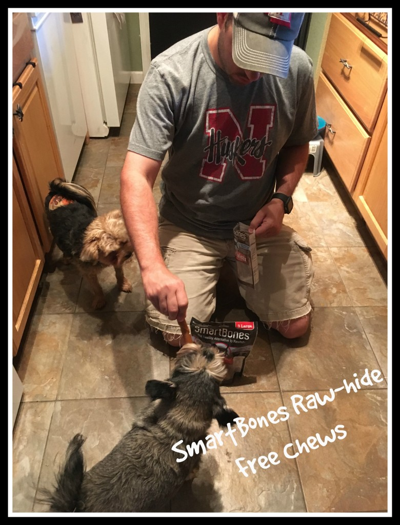 #SmartBones chews How to be a great dog owner
